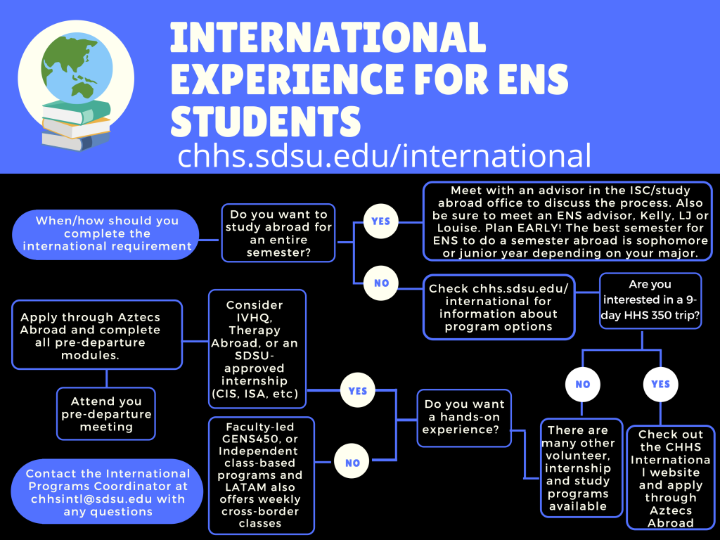 international experience for ens students